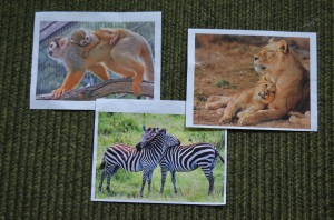 Print large images of animals